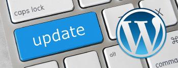 Precauciones al actualizar WordPress, theme o plugins