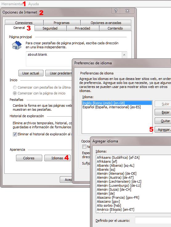 Elegir idioma del navegador Internet Explorer