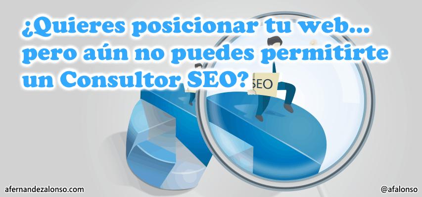 Cómo posicionar tu web si no puedes contratar un consultor SEO